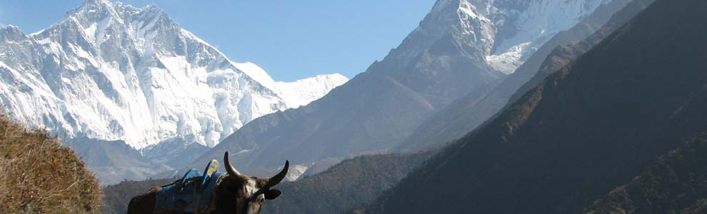 Link Exchange, Nepal travel information link